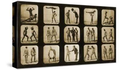 Athletes Posturing, from the 'Animal Locomotion' Series, C.1881-Eadweard Muybridge-Stretched Canvas Print