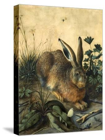 Hare-Hans Hoffmann-Stretched Canvas Print