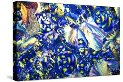 Copper Sulphate And Magnesium Sulphate-Dr. Keith Wheeler-Stretched Canvas Print