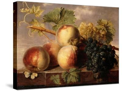 Peaches and Grapes with a Cabbage White on a Marble Ledge-Jan Frans Dael-Stretched Canvas Print
