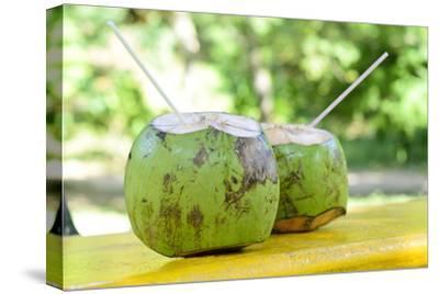 Fresh Coconut-Paul_Brighton-Stretched Canvas Print