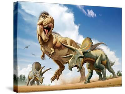 Tyrannosaurus Rex Fighting with Two Triceratops--Stretched Canvas Print