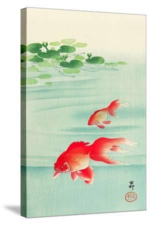 Two Goldfish-Koson Ohara-Stretched Canvas Print