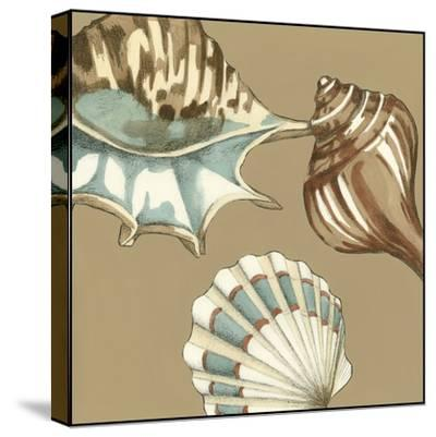 Small Shell Trio on Khaki III-Megan Meagher-Stretched Canvas Print