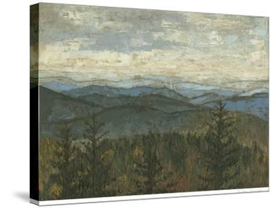 Blue Ridge View II-Megan Meagher-Stretched Canvas Print