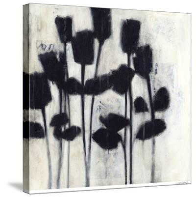 Roses II-Norman Jr^-Stretched Canvas Print