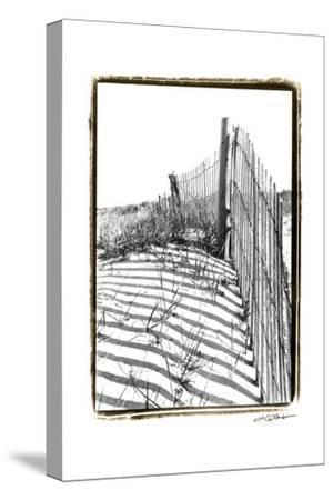 Beach Scape IV-Laura Denardo-Stretched Canvas Print