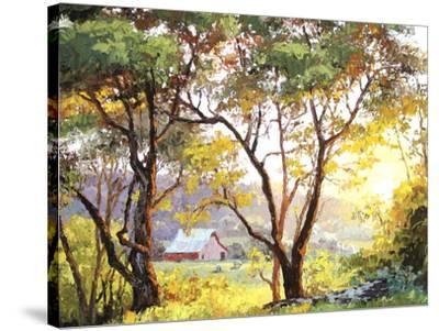 Burnished Landscape-Erin Dertner-Stretched Canvas Print