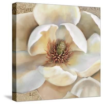 Magnolia Masterpiece II-Louise Montillio-Stretched Canvas Print