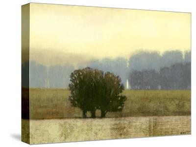 Villa Park I-Norman Wyatt Jr^-Stretched Canvas Print