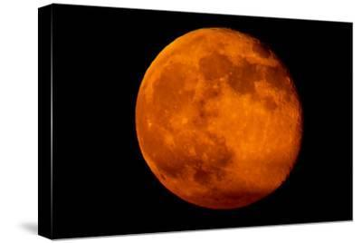 One Day after the 2013 Super Moon, the Brightest and Largest Full Moon of the Year-Kent Kobersteen-Stretched Canvas Print