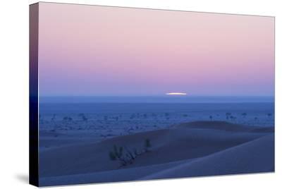 Sunrise over the Sand Dunes of the Rub' Al Khali, the Empty Quarter, Oman-Bill Hatcher-Stretched Canvas Print