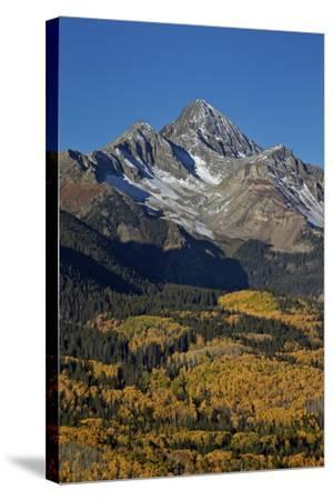 Wilson Peak in the Fall, San Juan National Forest, Colorado, Usa-James Hager-Stretched Canvas Print