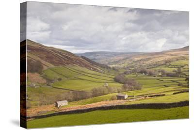 Swaledale in the Yorkshire Dales National Park, Yorkshire, England, United Kingdom, Europe-Julian Elliott-Stretched Canvas Print