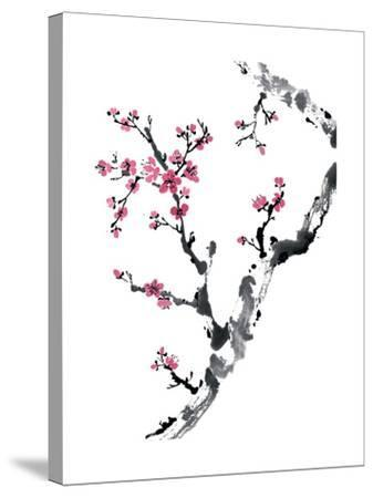 Plum Blossom Branch II-Nan Rae-Stretched Canvas Print
