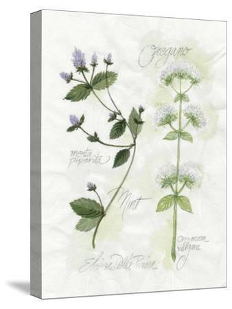 Oregano and Mint-Elissa Della-piana-Stretched Canvas Print