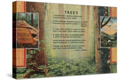 Joyce Kilmer Trees Poem, Forest--Stretched Canvas Print
