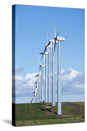 Windmills, Wallula, Washington-Paul Souders-Stretched Canvas Print