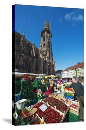 Saturday Market, Freiburg Cathedral, Freiburg, Baden-Wurttemberg, Germany, Europe-Christian Kober-Stretched Canvas Print