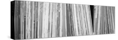 Row of Music Records, Germany--Stretched Canvas Print