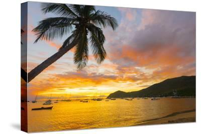 Caribbean, Martinique, Les Anse D'Arlet, Grand Anse Beach-Alan Copson-Stretched Canvas Print