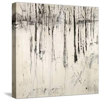 Nothing Lost-Jodi Maas-Stretched Canvas Print