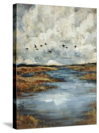 Days Flight-Sydney Edmunds-Stretched Canvas Print