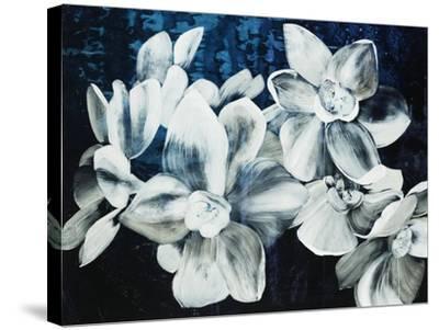 Paper Whites-Kari Taylor-Stretched Canvas Print