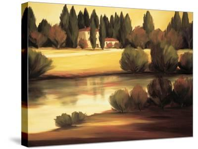 Country Reflections-Tim Howe-Stretched Canvas Print