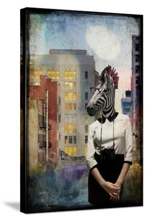 Zebra Strolling the High Line--Stretched Canvas Print