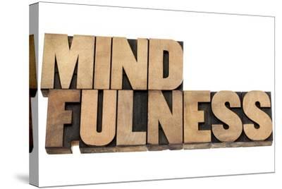 Mindfulness-PixelsAway-Stretched Canvas Print