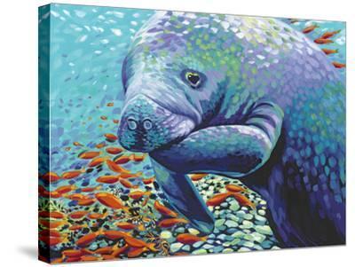 Sea Sweetheart II-Carolee Vitaletti-Stretched Canvas Print