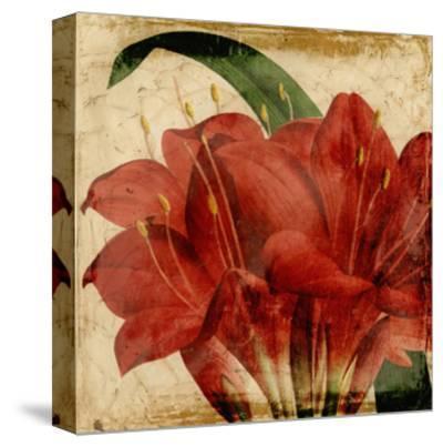 Vibrant Floral VIII-Vision Studio-Stretched Canvas Print