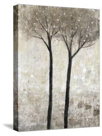 Bloom II-Tim O'toole-Stretched Canvas Print