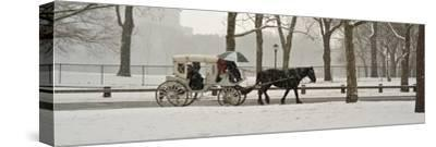 A Horse a Carriage in Central Park During a Blizzard-Kike Calvo-Stretched Canvas Print
