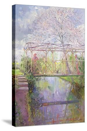 The Trellis Crossing-Timothy Easton-Stretched Canvas Print
