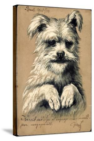 Präge Hund, Hund Auf Zwei Beinen--Stretched Canvas Print