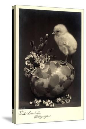 Frohe Ostern, Küken Sitzt Auf Einem Osterei,Kätzchen--Stretched Canvas Print