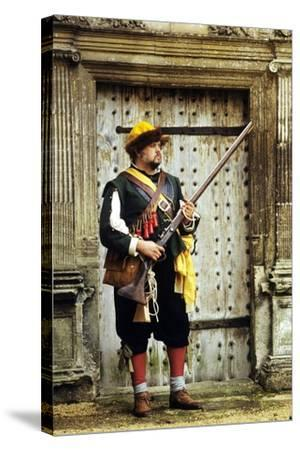English Civil War Musketeer, Re-Enactment--Stretched Canvas Print