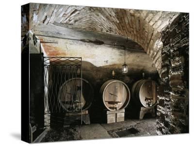 Italy, Brescia, Castle of Bornato, Wine Cellar--Stretched Canvas Print