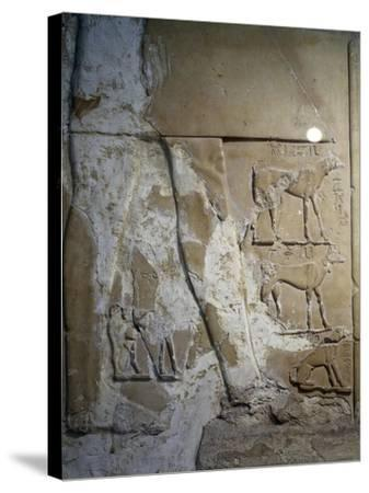Stele of Antef V, Detail--Stretched Canvas Print