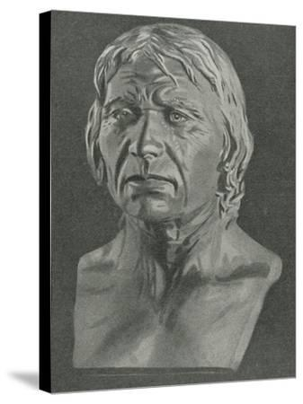 Bust of a Cro-Magnon Man--Stretched Canvas Print