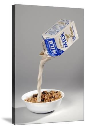Fake Milk Carton and Bowl, from a Joke Shop--Stretched Canvas Print