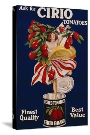 Poster Advertising Cirio Tomatoes, C.1920--Stretched Canvas Print