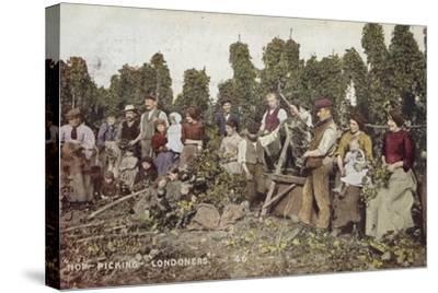 Hop Picking Londoners--Stretched Canvas Print