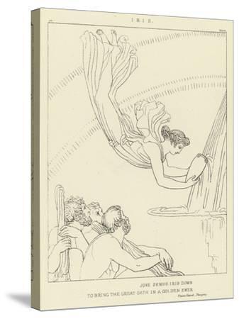 Iris-John Flaxman-Stretched Canvas Print