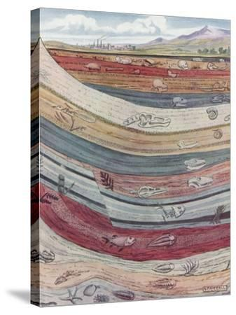 Strata of the Earth's Crust--Stretched Canvas Print