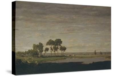 Spring, Pond, 1852-Th?odore Rousseau-Stretched Canvas Print