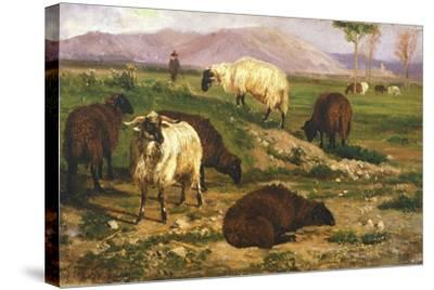 Grazing Animals-Nicola Palizzi-Stretched Canvas Print