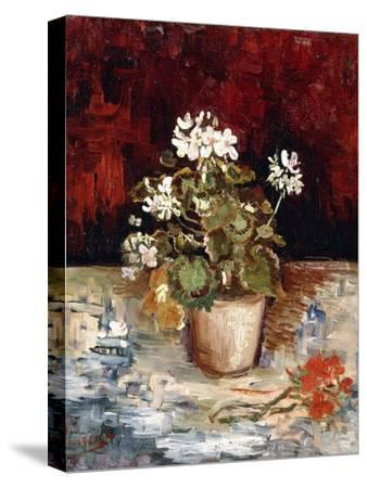 Still-Life Pot of Geraniums, 1886-Vincent van Gogh-Stretched Canvas Print